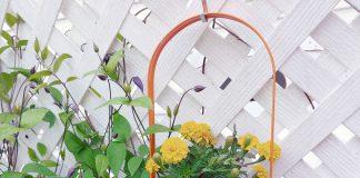 Enkla tips för att dekorera trädgården | Bizbay