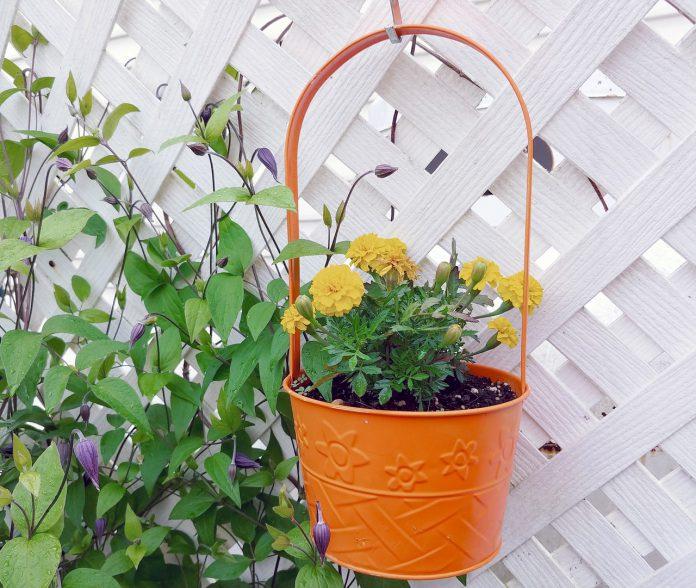 Enkla tips för att dekorera trädgården   Bizbay