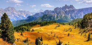 Cortina med vandring | Bizbay