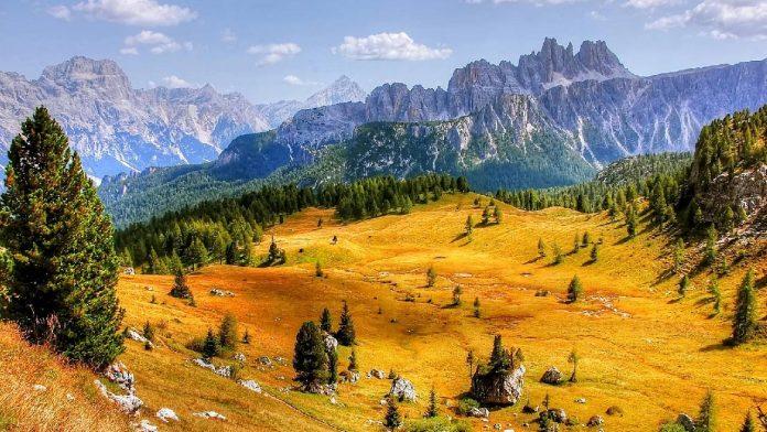 Cortina med vandring   Bizbay